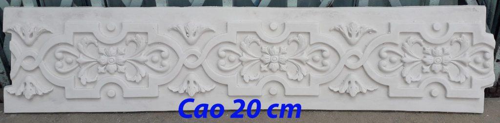 CT-20-cm